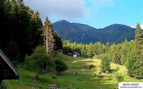 Appartamenti In Affitto In Montagna Trentino by Montagna Vacanza In Baita Cercobaita