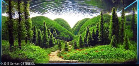 nature aquascape the nature aquarium style aquascaping love