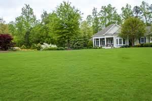 backyard grass 7 tips for green lush grass better housekeeper