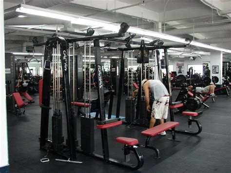 power house gym powerhouse gym san diego ca 92109 858 490 1551