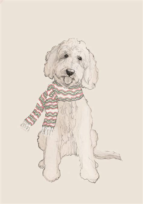 goldendoodle drawing doodle