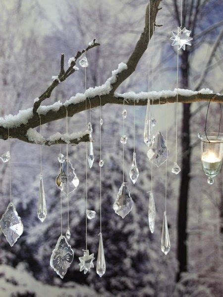 37 best images about winter garden on pinterest gardens