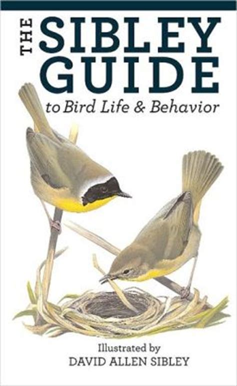 the sibley guide to bird life and behavior by david allen