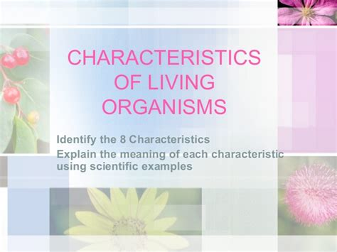 biography definition and characteristics characteristics of life
