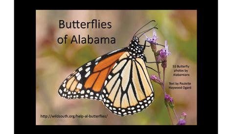Butterfly Al Meet 55 Butterflies Who Call Alabama Home Al