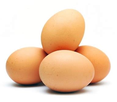 protein 4 eggs top 4 high protein building foods vince delmonte
