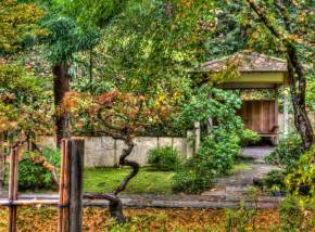 thom zehrfeld photography japanese gardens portland part 3