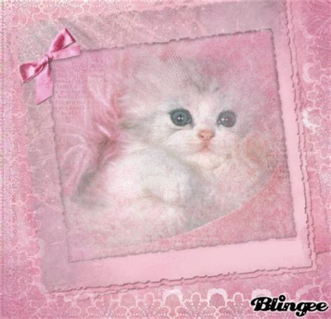 cute cat  pink frame picture  blingeecom