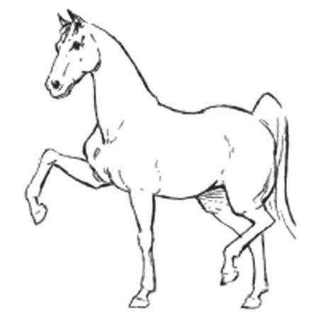color pages for kids how to draw a horse step by step
