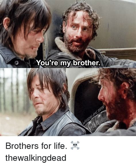 memes  brothers  life brothers  life
