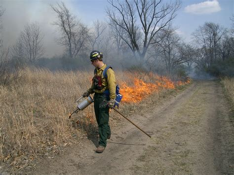 controlled burn environmental factors indiana dunes national lakeshore