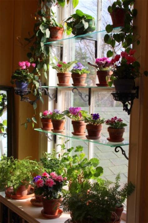 indoor window garden indoor window garden on pinterest indoor gardening