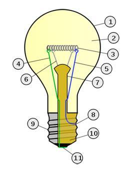 electric bulb diagram incandescent light bulb types bulbs