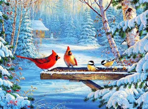 desktop nexus christmas winter winter birds other abstract background wallpapers on desktop nexus image 1904822