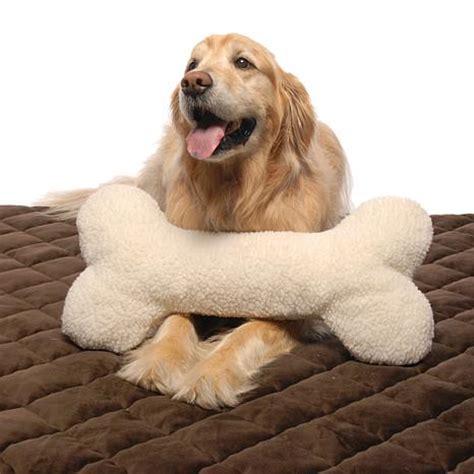 bone pillow large 6525692 hsn