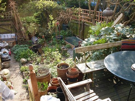 permaculture backyard 17 best images about homestead on pinterest raised beds garden pests and gabion wall