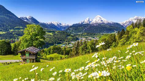 swiss alps swiss alps 1517157