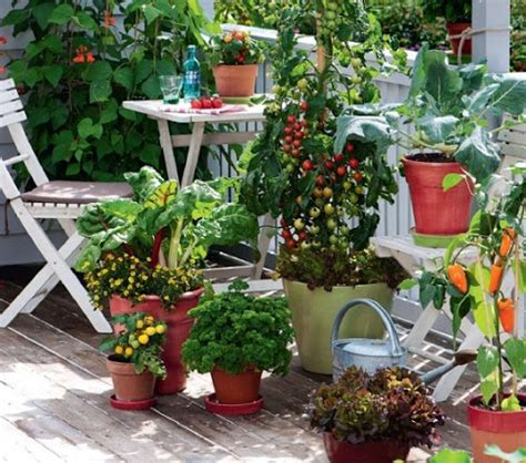 Decorating Your Apartment Balcony Porch Garden Vegetables
