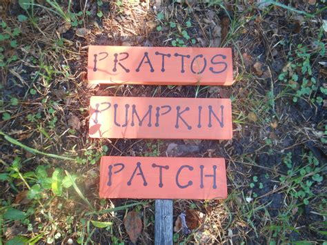 Personalized Backyard Signs by Pumpkin Personalized Yard Sign Other