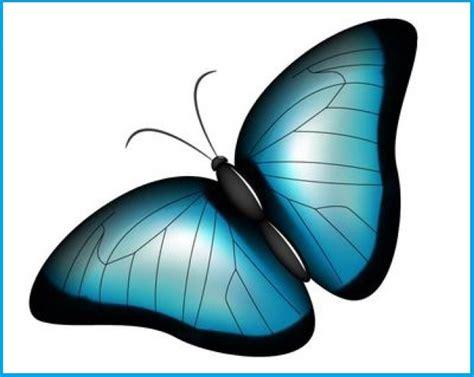 imagenes de mariposas azules animadas imagenes gratis de mariposas de colores imagenes de