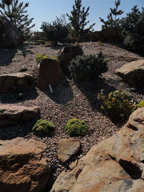 Rock Garden Fort Collins A New Rock Garden Graces Fort Collins Gardens On Creek Forum Topic American