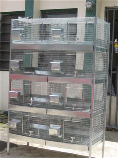 jaulas conejeras industriales jaulas para conejos jaulasyequipos s