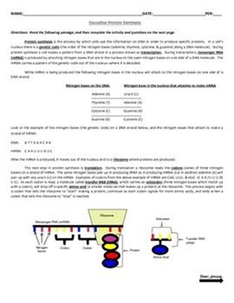 Dna Rna Protein Synthesis And Mutation Worksheet by Decoding Protein Synthesis Decoding Mutations Activities