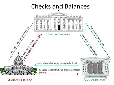 Federal Government Background Check Observations Restoring Government S Three Branches To Constitutional Balance
