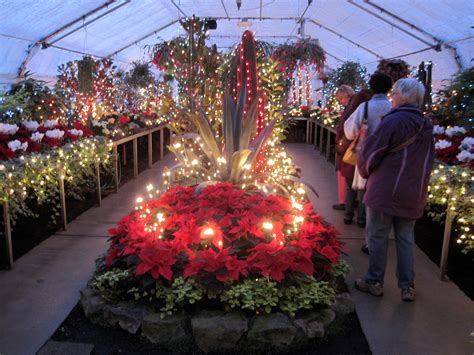 festive lights adorn park conservatory the spokesman review