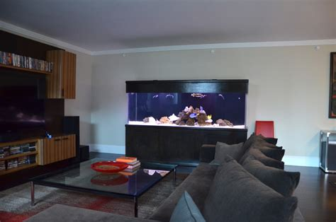 living room aquarium four seasons residential shark tank modern living room