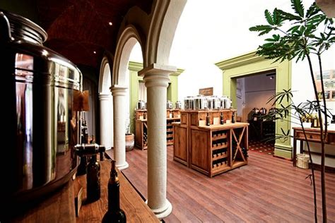 olio tasting room olio fino tasting room san miguel de allende all you need to before you go with photos