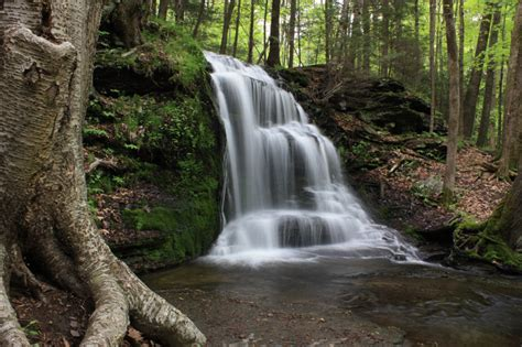 trout brook reservation holden ma list of other waterfalls in new