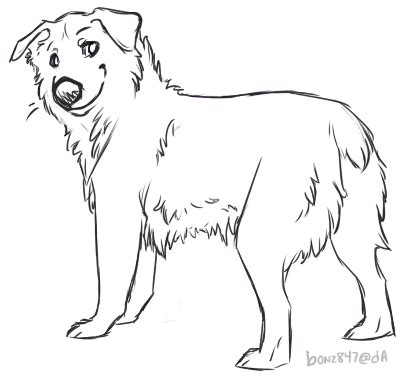mobile australian shepherd drawing coloring pages
