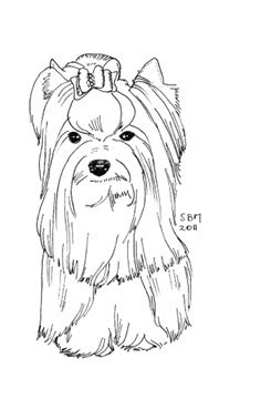 yorkie coloring pages terrier coloring pages