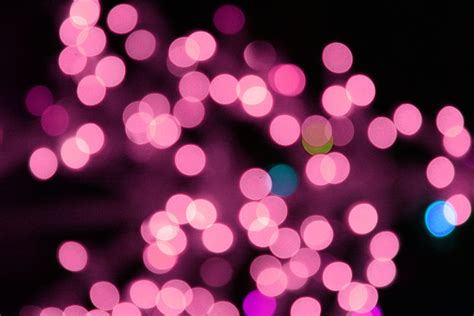 blurred christmas lights pink picture free photograph