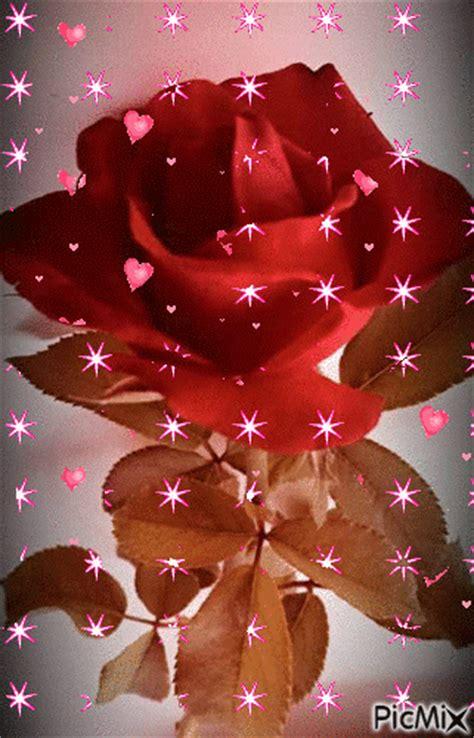 imagenes de rosas azules con brillo y movimiento imagenes de rosas con movimiento