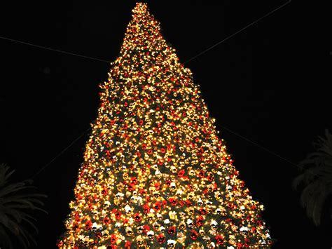 historia arbol de navidad la historia 225 rbol de navidad taringa
