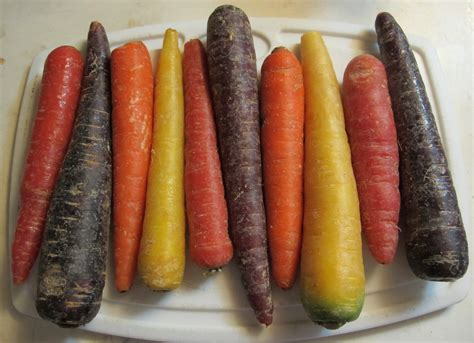 colored carrots ten colored carrots 1 by windthin on deviantart