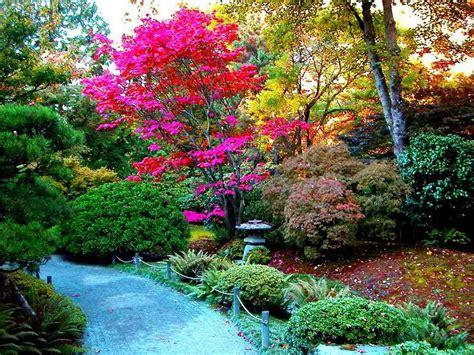 resultado de imagen para jardines de rosas rojas y azules jard 237 n japones blogdepelusita