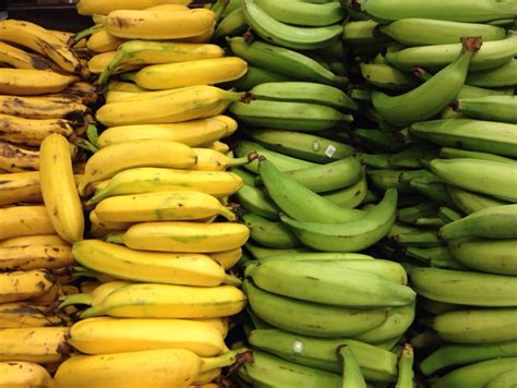 fruits of ecuador 5 types of banana the russian abroad