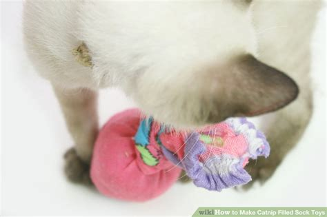 diy socks for cats diy cat toys from socks diy projects