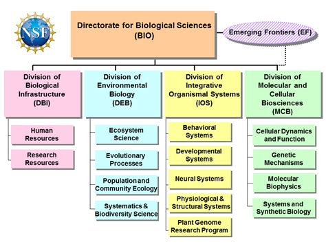 biography and structure us nsf bio about biological sciences bio