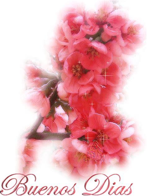 imagenes de buenos dias amor con flores buenos d 237 as con flores imagenes y carteles