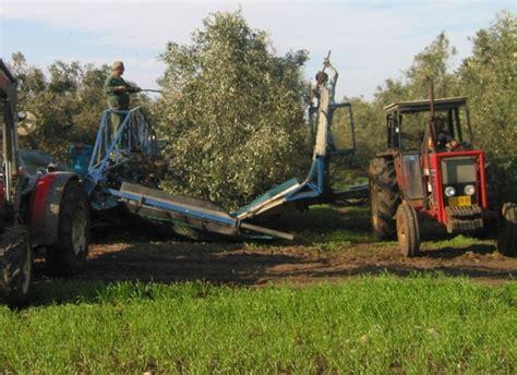fruit tree shaker picking machines shaker machines for olives citrus
