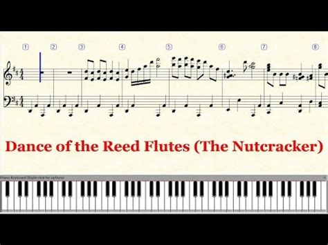 keyboard tutorial nutcracker piano tutorial sheet tchaikovsky dance of the reed
