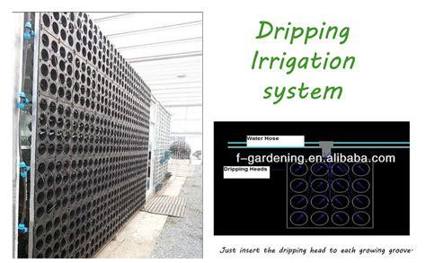 vertical garden green system decorative green wall panel