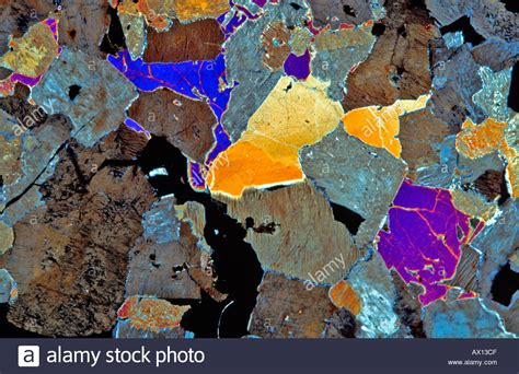 Pyroxene Thin Section by Rock Felsite Porphyry Pyroxene Thin Section Showing Minerals Through Stock Photo Royalty Free