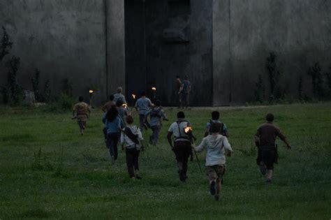 maze runner film series wiki gladers the maze runner wiki