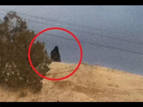 Inidia Cat 24 sasquatch stories from the navajo nation paranormal