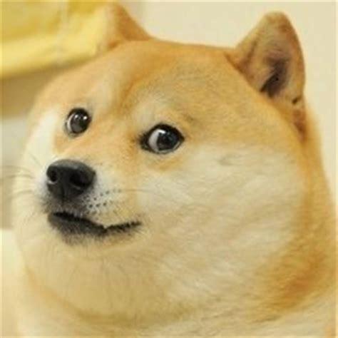 Doge Original Meme - tagged doge doge meme funny humor